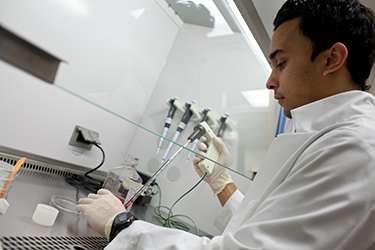 a researcher in the lab