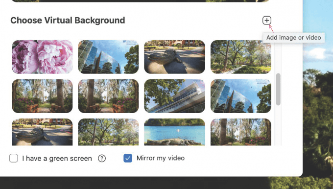 Final Step on how to download an image for your Zoom Background