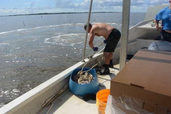 Clam worker bending over the boat in Cedar Key