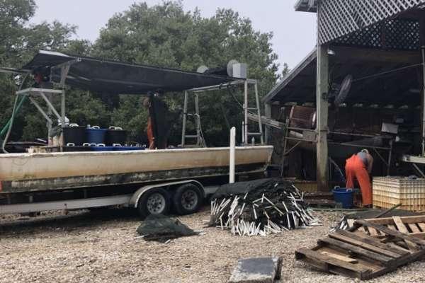 boat in a marina
